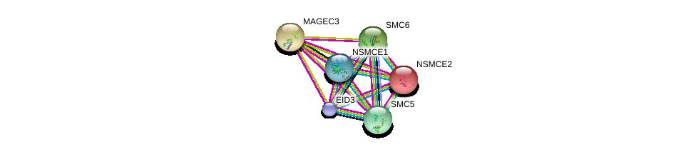 http://string-db.org/version_10/api/image/networkList?limit=0&targetmode=proteins&caller_identity=gene_cards&network_flavor=evidence&identifiers=9606.ENSP00000298296%0d%0a9606.ENSP00000355077%0d%0a9606.ENSP00000354957%0d%0a9606.ENSP00000323439%0d%0a9606.ENSP00000287437%0d%0a9606.ENSP00000435619%0d%0a