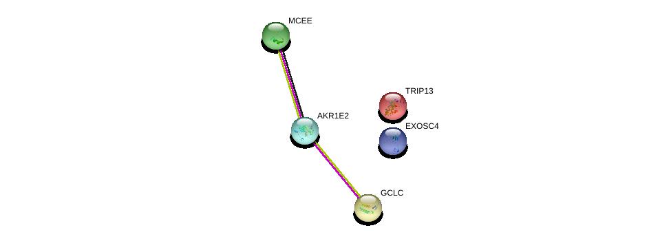 http://string-db.org/version_10/api/image/networkList?limit=0&targetmode=proteins&caller_identity=gene_cards&network_flavor=evidence&identifiers=9606.ENSP00000298375%0d%0a9606.ENSP00000229416%0d%0a9606.ENSP00000315476%0d%0a9606.ENSP00000315476%0d%0a9606.ENSP00000244217%0d%0a9606.ENSP00000166345%0d%0a
