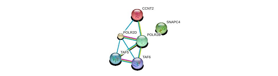http://string-db.org/version_10/api/image/networkList?limit=0&targetmode=proteins&caller_identity=gene_cards&network_flavor=evidence&identifiers=9606.ENSP00000298532%0d%0a9606.ENSP00000264157%0d%0a9606.ENSP00000272645%0d%0a9606.ENSP00000312735%0d%0a9606.ENSP00000358854%0d%0a9606.ENSP00000399982%0d%0a