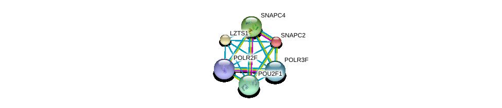 http://string-db.org/version_10/api/image/networkList?limit=0&targetmode=proteins&caller_identity=gene_cards&network_flavor=evidence&identifiers=9606.ENSP00000298532%0d%0a9606.ENSP00000356840%0d%0a9606.ENSP00000221573%0d%0a9606.ENSP00000403852%0d%0a9606.ENSP00000366828%0d%0a9606.ENSP00000265801%0d%0a