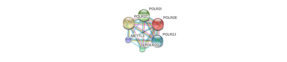 http://string-db.org/version_10/api/image/networkList?limit=0&targetmode=proteins&caller_identity=gene_cards&network_flavor=evidence&identifiers=9606.ENSP00000298717%0d%0a9606.ENSP00000215587%0d%0a9606.ENSP00000219252%0d%0a9606.ENSP00000221859%0d%0a9606.ENSP00000272645%0d%0a9606.ENSP00000292614%0d%0a