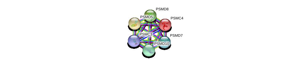 http://string-db.org/version_10/api/image/networkList?limit=0&targetmode=proteins&caller_identity=gene_cards&network_flavor=evidence&identifiers=9606.ENSP00000298852%0d%0a9606.ENSP00000157812%0d%0a9606.ENSP00000210313%0d%0a9606.ENSP00000215071%0d%0a9606.ENSP00000217958%0d%0a9606.ENSP00000219313%0d%0a
