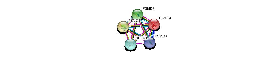 http://string-db.org/version_10/api/image/networkList?limit=0&targetmode=proteins&caller_identity=gene_cards&network_flavor=evidence&identifiers=9606.ENSP00000298852%0d%0a9606.ENSP00000215071%0d%0a9606.ENSP00000219313%0d%0a9606.ENSP00000157812%0d%0a9606.ENSP00000248566%0d%0a9606.ENSP00000248566%0d%0a