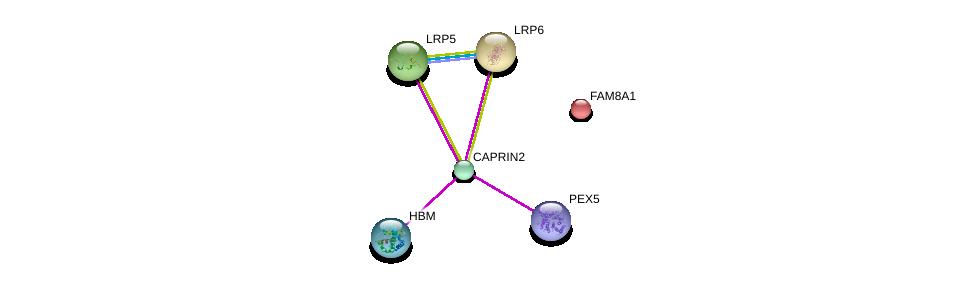 http://string-db.org/version_10/api/image/networkList?limit=0&targetmode=proteins&caller_identity=gene_cards&network_flavor=evidence&identifiers=9606.ENSP00000298892%0d%0a9606.ENSP00000407401%0d%0a9606.ENSP00000294304%0d%0a9606.ENSP00000261349%0d%0a9606.ENSP00000349270%0d%0a9606.ENSP00000259963%0d%0a