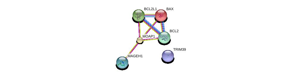 http://string-db.org/version_10/api/image/networkList?limit=0&targetmode=proteins&caller_identity=gene_cards&network_flavor=evidence&identifiers=9606.ENSP00000298894%0d%0a9606.ENSP00000343706%0d%0a9606.ENSP00000293288%0d%0a9606.ENSP00000302564%0d%0a9606.ENSP00000329623%0d%0a9606.ENSP00000365844%0d%0a