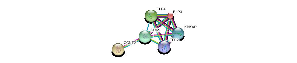 http://string-db.org/version_10/api/image/networkList?limit=0&targetmode=proteins&caller_identity=gene_cards&network_flavor=evidence&identifiers=9606.ENSP00000298937%0d%0a9606.ENSP00000256398%0d%0a9606.ENSP00000414851%0d%0a9606.ENSP00000363779%0d%0a9606.ENSP00000362361%0d%0a9606.ENSP00000264157%0d%0a
