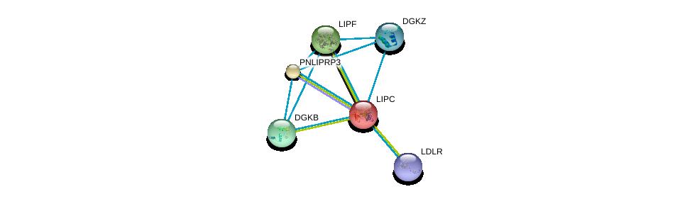 http://string-db.org/version_10/api/image/networkList?limit=0&targetmode=proteins&caller_identity=gene_cards&network_flavor=evidence&identifiers=9606.ENSP00000299022%0d%0a9606.ENSP00000454071%0d%0a9606.ENSP00000412178%0d%0a9606.ENSP00000382260%0d%0a9606.ENSP00000377900%0d%0a9606.ENSP00000358232%0d%0a