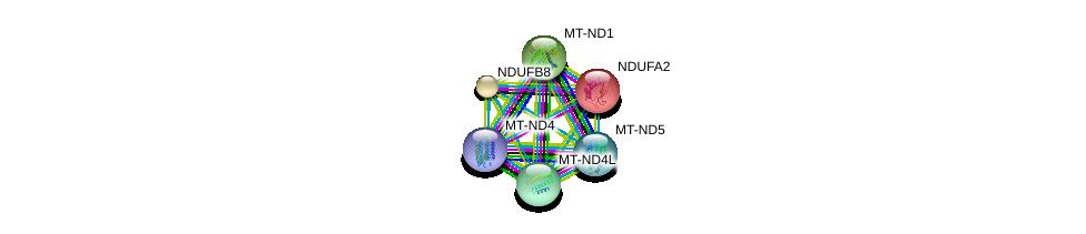 http://string-db.org/version_10/api/image/networkList?limit=0&targetmode=proteins&caller_identity=gene_cards&network_flavor=evidence&identifiers=9606.ENSP00000299166%0d%0a9606.ENSP00000252102%0d%0a9606.ENSP00000354687%0d%0a9606.ENSP00000354728%0d%0a9606.ENSP00000354813%0d%0a9606.ENSP00000354961%0d%0a