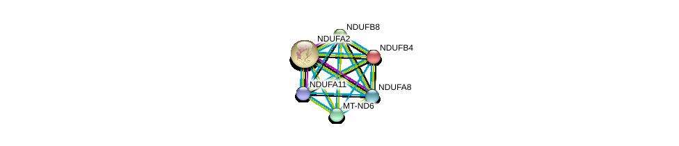 http://string-db.org/version_10/api/image/networkList?limit=0&targetmode=proteins&caller_identity=gene_cards&network_flavor=evidence&identifiers=9606.ENSP00000299166%0d%0a9606.ENSP00000252102%0d%0a9606.ENSP00000362873%0d%0a9606.ENSP00000354665%0d%0a9606.ENSP00000389160%0d%0a9606.ENSP00000184266%0d%0a