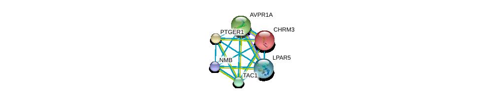 http://string-db.org/version_10/api/image/networkList?limit=0&targetmode=proteins&caller_identity=gene_cards&network_flavor=evidence&identifiers=9606.ENSP00000299178%0d%0a9606.ENSP00000327875%0d%0a9606.ENSP00000255380%0d%0a9606.ENSP00000292513%0d%0a9606.ENSP00000321106%0d%0a9606.ENSP00000378089%0d%0a
