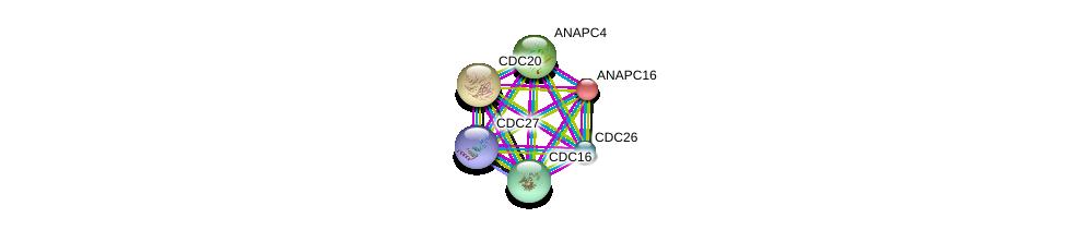 http://string-db.org/version_10/api/image/networkList?limit=0&targetmode=proteins&caller_identity=gene_cards&network_flavor=evidence&identifiers=9606.ENSP00000299381%0d%0a9606.ENSP00000434614%0d%0a9606.ENSP00000318775%0d%0a9606.ENSP00000308450%0d%0a9606.ENSP00000348554%0d%0a9606.ENSP00000363322%0d%0a