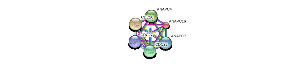 http://string-db.org/version_10/api/image/networkList?limit=0&targetmode=proteins&caller_identity=gene_cards&network_flavor=evidence&identifiers=9606.ENSP00000299381%0d%0a9606.ENSP00000434614%0d%0a9606.ENSP00000318775%0d%0a9606.ENSP00000308450%0d%0a9606.ENSP00000394394%0d%0a9606.ENSP00000378350%0d%0a