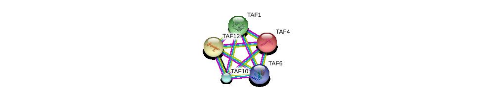 http://string-db.org/version_10/api/image/networkList?limit=0&targetmode=proteins&caller_identity=gene_cards&network_flavor=evidence&identifiers=9606.ENSP00000299424%0d%0a9606.ENSP00000276072%0d%0a9606.ENSP00000263974%0d%0a9606.ENSP00000399982%0d%0a9606.ENSP00000252996%0d%0a9606.ENSP00000252996%0d%0a