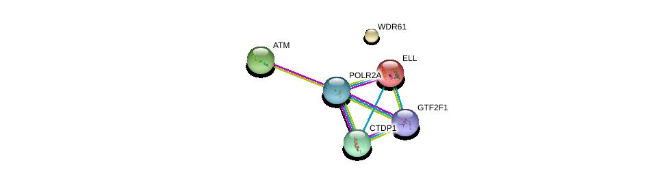 http://string-db.org/version_10/api/image/networkList?limit=0&targetmode=proteins&caller_identity=gene_cards&network_flavor=evidence&identifiers=9606.ENSP00000299543%0d%0a9606.ENSP00000377969%0d%0a9606.ENSP00000314949%0d%0a9606.ENSP00000262809%0d%0a9606.ENSP00000267973%0d%0a9606.ENSP00000278616%0d%0a