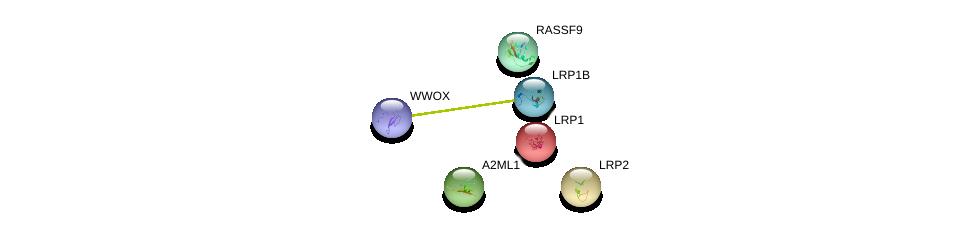 http://string-db.org/version_10/api/image/networkList?limit=0&targetmode=proteins&caller_identity=gene_cards&network_flavor=evidence&identifiers=9606.ENSP00000299698%0d%0a9606.ENSP00000354884%0d%0a9606.ENSP00000457230%0d%0a9606.ENSP00000263816%0d%0a9606.ENSP00000243077%0d%0a9606.ENSP00000374135%0d%0a