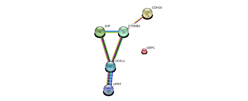 http://string-db.org/version_10/api/image/networkList?limit=0&targetmode=proteins&caller_identity=gene_cards&network_flavor=evidence&identifiers=9606.ENSP00000299752%0d%0a9606.ENSP00000344456%0d%0a9606.ENSP00000346155%0d%0a9606.ENSP00000311113%0d%0a9606.ENSP00000362481%0d%0a9606.ENSP00000253801%0d%0a
