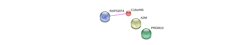 http://string-db.org/version_10/api/image/networkList?limit=0&targetmode=proteins&caller_identity=gene_cards&network_flavor=evidence&identifiers=9606.ENSP00000300006%0d%0a9606.ENSP00000380271%0d%0a9606.ENSP00000323929%0d%0a9606.ENSP00000351686%0d%0a