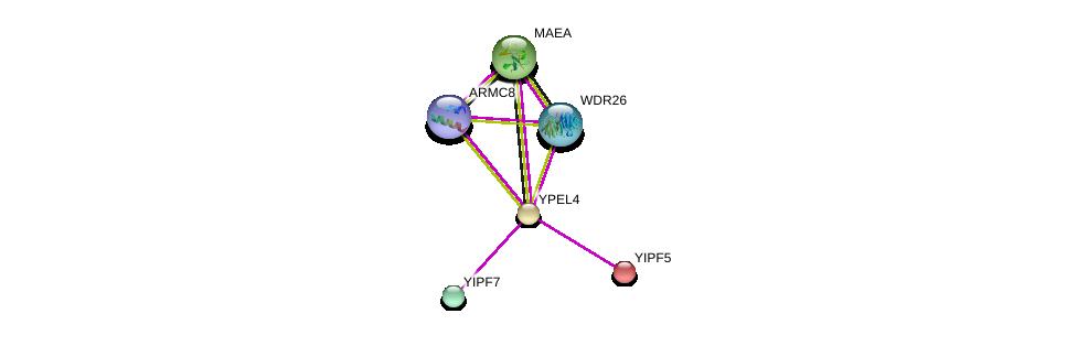 http://string-db.org/version_10/api/image/networkList?limit=0&targetmode=proteins&caller_identity=gene_cards&network_flavor=evidence&identifiers=9606.ENSP00000300022%0d%0a9606.ENSP00000408108%0d%0a9606.ENSP00000332772%0d%0a9606.ENSP00000274496%0d%0a9606.ENSP00000302830%0d%0a9606.ENSP00000420333%0d%0a