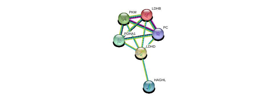 http://string-db.org/version_10/api/image/networkList?limit=0&targetmode=proteins&caller_identity=gene_cards&network_flavor=evidence&identifiers=9606.ENSP00000300051%0d%0a9606.ENSP00000369134%0d%0a9606.ENSP00000374353%0d%0a9606.ENSP00000377527%0d%0a9606.ENSP00000320171%0d%0a9606.ENSP00000229319%0d%0a
