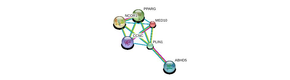 http://string-db.org/version_10/api/image/networkList?limit=0&targetmode=proteins&caller_identity=gene_cards&network_flavor=evidence&identifiers=9606.ENSP00000300055%0d%0a9606.ENSP00000390849%0d%0a9606.ENSP00000428982%0d%0a9606.ENSP00000255764%0d%0a9606.ENSP00000268712%0d%0a9606.ENSP00000287820%0d%0a