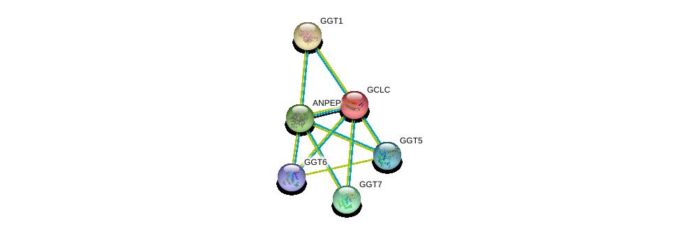 http://string-db.org/version_10/api/image/networkList?limit=0&targetmode=proteins&caller_identity=gene_cards&network_flavor=evidence&identifiers=9606.ENSP00000300060%0d%0a9606.ENSP00000229416%0d%0a9606.ENSP00000248923%0d%0a9606.ENSP00000458307%0d%0a9606.ENSP00000338964%0d%0a9606.ENSP00000381340%0d%0a