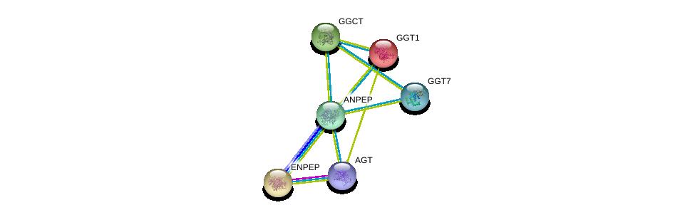 http://string-db.org/version_10/api/image/networkList?limit=0&targetmode=proteins&caller_identity=gene_cards&network_flavor=evidence&identifiers=9606.ENSP00000300060%0d%0a9606.ENSP00000275428%0d%0a9606.ENSP00000265162%0d%0a9606.ENSP00000338964%0d%0a9606.ENSP00000355627%0d%0a9606.ENSP00000248923%0d%0a