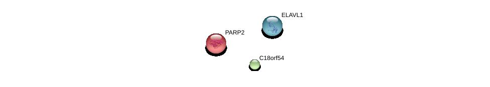 http://string-db.org/version_10/api/image/networkList?limit=0&targetmode=proteins&caller_identity=gene_cards&network_flavor=evidence&identifiers=9606.ENSP00000300091%0d%0a9606.ENSP00000250416%0d%0a9606.ENSP00000385269%0d%0a