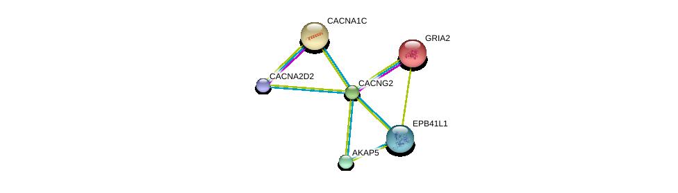 http://string-db.org/version_10/api/image/networkList?limit=0&targetmode=proteins&caller_identity=gene_cards&network_flavor=evidence&identifiers=9606.ENSP00000300105%0d%0a9606.ENSP00000264426%0d%0a9606.ENSP00000266376%0d%0a9606.ENSP00000315615%0d%0a9606.ENSP00000418081%0d%0a9606.ENSP00000337168%0d%0a