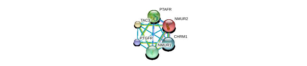 http://string-db.org/version_10/api/image/networkList?limit=0&targetmode=proteins&caller_identity=gene_cards&network_flavor=evidence&identifiers=9606.ENSP00000300108%0d%0a9606.ENSP00000305877%0d%0a9606.ENSP00000306490%0d%0a9606.ENSP00000255262%0d%0a9606.ENSP00000359793%0d%0a9606.ENSP00000301974%0d%0a