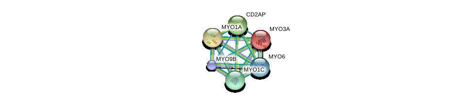 http://string-db.org/version_10/api/image/networkList?limit=0&targetmode=proteins&caller_identity=gene_cards&network_flavor=evidence&identifiers=9606.ENSP00000300119%0d%0a9606.ENSP00000352264%0d%0a9606.ENSP00000380444%0d%0a9606.ENSP00000265944%0d%0a9606.ENSP00000358994%0d%0a9606.ENSP00000352834%0d%0a