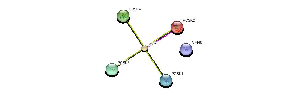 http://string-db.org/version_10/api/image/networkList?limit=0&targetmode=proteins&caller_identity=gene_cards&network_flavor=evidence&identifiers=9606.ENSP00000300175%0d%0a9606.ENSP00000262545%0d%0a9606.ENSP00000308024%0d%0a9606.ENSP00000305056%0d%0a9606.ENSP00000384330%0d%0a9606.ENSP00000300954%0d%0a
