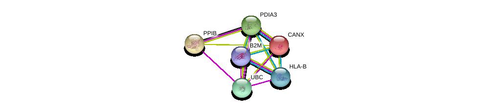 http://string-db.org/version_10/api/image/networkList?limit=0&targetmode=proteins&caller_identity=gene_cards&network_flavor=evidence&identifiers=9606.ENSP00000300289%0d%0a9606.ENSP00000344818%0d%0a9606.ENSP00000247461%0d%0a9606.ENSP00000300026%0d%0a9606.ENSP00000452780%0d%0a9606.ENSP00000399168%0d%0a