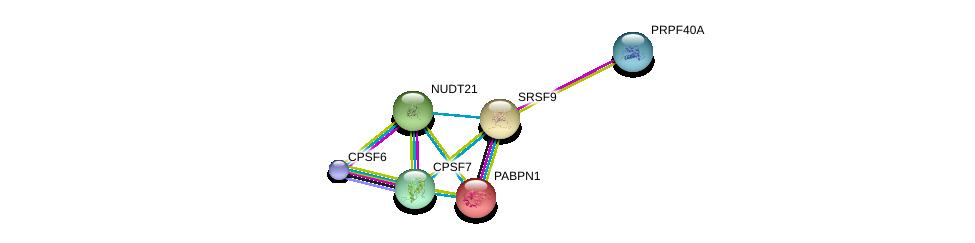 http://string-db.org/version_10/api/image/networkList?limit=0&targetmode=proteins&caller_identity=gene_cards&network_flavor=evidence&identifiers=9606.ENSP00000300291%0d%0a9606.ENSP00000391774%0d%0a9606.ENSP00000345412%0d%0a9606.ENSP00000386458%0d%0a9606.ENSP00000216727%0d%0a9606.ENSP00000229390%0d%0a