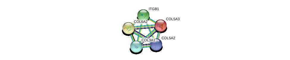 http://string-db.org/version_10/api/image/networkList?limit=0&targetmode=proteins&caller_identity=gene_cards&network_flavor=evidence&identifiers=9606.ENSP00000300527%0d%0a9606.ENSP00000304408%0d%0a9606.ENSP00000304408%0d%0a9606.ENSP00000303351%0d%0a9606.ENSP00000264828%0d%0a9606.ENSP00000364000%0d%0a