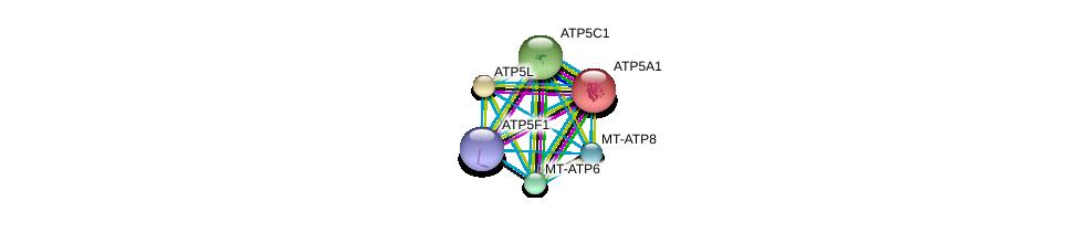 http://string-db.org/version_10/api/image/networkList?limit=0&targetmode=proteins&caller_identity=gene_cards&network_flavor=evidence&identifiers=9606.ENSP00000300688%0d%0a9606.ENSP00000355265%0d%0a9606.ENSP00000358737%0d%0a9606.ENSP00000354632%0d%0a9606.ENSP00000349142%0d%0a9606.ENSP00000282050%0d%0a