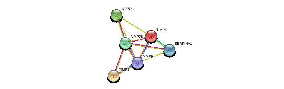http://string-db.org/version_10/api/image/networkList?limit=0&targetmode=proteins&caller_identity=gene_cards&network_flavor=evidence&identifiers=9606.ENSP00000300762%0d%0a9606.ENSP00000348068%0d%0a9606.ENSP00000275525%0d%0a9606.ENSP00000361405%0d%0a9606.ENSP00000218388%0d%0a9606.ENSP00000266085%0d%0a
