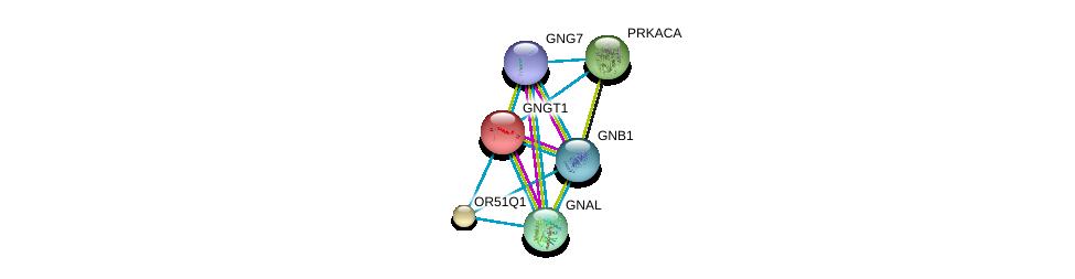 http://string-db.org/version_10/api/image/networkList?limit=0&targetmode=proteins&caller_identity=gene_cards&network_flavor=evidence&identifiers=9606.ENSP00000300778%0d%0a9606.ENSP00000334051%0d%0a9606.ENSP00000248572%0d%0a9606.ENSP00000367869%0d%0a9606.ENSP00000371594%0d%0a9606.ENSP00000309591%0d%0a