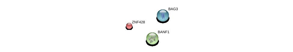 http://string-db.org/version_10/api/image/networkList?limit=0&targetmode=proteins&caller_identity=gene_cards&network_flavor=evidence&identifiers=9606.ENSP00000300811%0d%0a9606.ENSP00000310275%0d%0a9606.ENSP00000358081%0d%0a