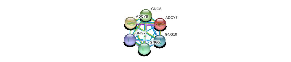 http://string-db.org/version_10/api/image/networkList?limit=0&targetmode=proteins&caller_identity=gene_cards&network_flavor=evidence&identifiers=9606.ENSP00000300873%0d%0a9606.ENSP00000359675%0d%0a9606.ENSP00000254235%0d%0a9606.ENSP00000371594%0d%0a9606.ENSP00000286355%0d%0a9606.ENSP00000363411%0d%0a