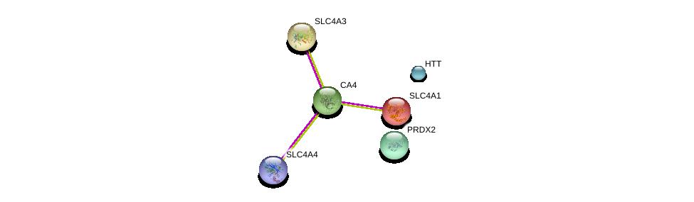 http://string-db.org/version_10/api/image/networkList?limit=0&targetmode=proteins&caller_identity=gene_cards&network_flavor=evidence&identifiers=9606.ENSP00000300900%0d%0a9606.ENSP00000393557%0d%0a9606.ENSP00000262418%0d%0a9606.ENSP00000273063%0d%0a9606.ENSP00000347184%0d%0a9606.ENSP00000301522%0d%0a