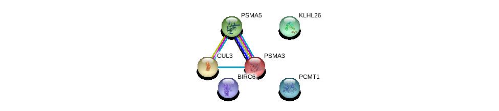 http://string-db.org/version_10/api/image/networkList?limit=0&targetmode=proteins&caller_identity=gene_cards&network_flavor=evidence&identifiers=9606.ENSP00000300976%0d%0a9606.ENSP00000356348%0d%0a9606.ENSP00000271308%0d%0a9606.ENSP00000216455%0d%0a9606.ENSP00000393596%0d%0a9606.ENSP00000264414%0d%0a
