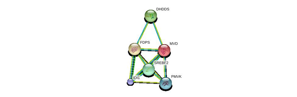 http://string-db.org/version_10/api/image/networkList?limit=0&targetmode=proteins&caller_identity=gene_cards&network_flavor=evidence&identifiers=9606.ENSP00000301012%0d%0a9606.ENSP00000349078%0d%0a9606.ENSP00000354476%0d%0a9606.ENSP00000357452%0d%0a9606.ENSP00000370748%0d%0a9606.ENSP00000353104%0d%0a