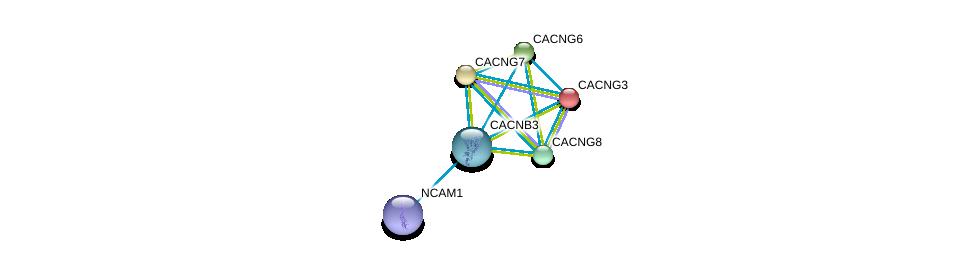 http://string-db.org/version_10/api/image/networkList?limit=0&targetmode=proteins&caller_identity=gene_cards&network_flavor=evidence&identifiers=9606.ENSP00000301050%0d%0a9606.ENSP00000252729%0d%0a9606.ENSP00000005284%0d%0a9606.ENSP00000318472%0d%0a9606.ENSP00000222212%0d%0a9606.ENSP00000270458%0d%0a