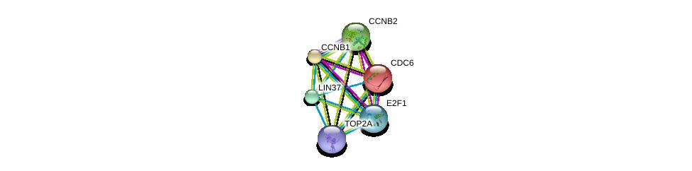 http://string-db.org/version_10/api/image/networkList?limit=0&targetmode=proteins&caller_identity=gene_cards&network_flavor=evidence&identifiers=9606.ENSP00000301159%0d%0a9606.ENSP00000411532%0d%0a9606.ENSP00000288207%0d%0a9606.ENSP00000209728%0d%0a9606.ENSP00000345571%0d%0a9606.ENSP00000256442%0d%0a
