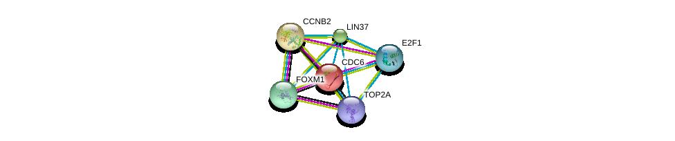 http://string-db.org/version_10/api/image/networkList?limit=0&targetmode=proteins&caller_identity=gene_cards&network_flavor=evidence&identifiers=9606.ENSP00000301159%0d%0a9606.ENSP00000411532%0d%0a9606.ENSP00000288207%0d%0a9606.ENSP00000209728%0d%0a9606.ENSP00000345571%0d%0a9606.ENSP00000342307%0d%0a