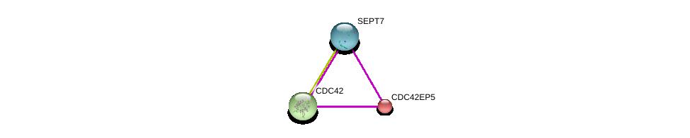 http://string-db.org/version_10/api/image/networkList?limit=0&targetmode=proteins&caller_identity=gene_cards&network_flavor=evidence&identifiers=9606.ENSP00000301200%0d%0a9606.ENSP00000314458%0d%0a9606.ENSP00000381992%0d%0a