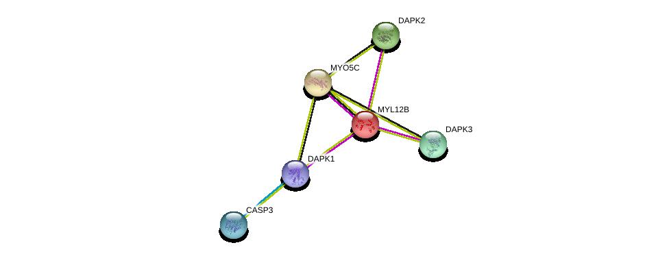 http://string-db.org/version_10/api/image/networkList?limit=0&targetmode=proteins&caller_identity=gene_cards&network_flavor=evidence&identifiers=9606.ENSP00000301264%0d%0a9606.ENSP00000311032%0d%0a9606.ENSP00000261891%0d%0a9606.ENSP00000350785%0d%0a9606.ENSP00000261839%0d%0a9606.ENSP00000237500%0d%0a