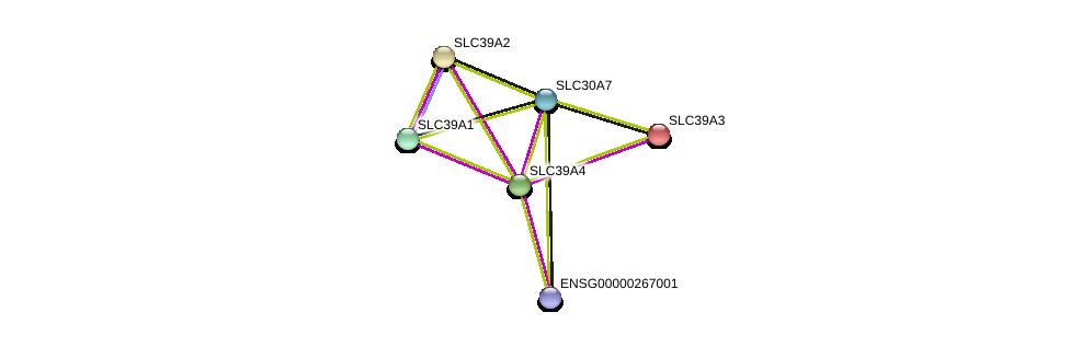 http://string-db.org/version_10/api/image/networkList?limit=0&targetmode=proteins&caller_identity=gene_cards&network_flavor=evidence&identifiers=9606.ENSP00000301305%0d%0a9606.ENSP00000269740%0d%0a9606.ENSP00000298681%0d%0a9606.ENSP00000309710%0d%0a9606.ENSP00000467958%0d%0a9606.ENSP00000350278%0d%0a