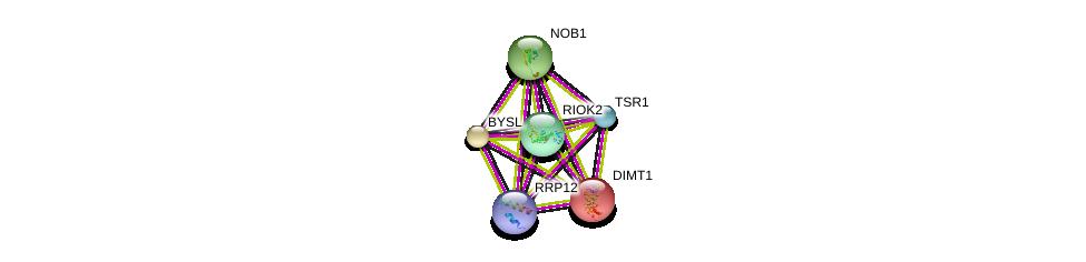 http://string-db.org/version_10/api/image/networkList?limit=0&targetmode=proteins&caller_identity=gene_cards&network_flavor=evidence&identifiers=9606.ENSP00000301364%0d%0a9606.ENSP00000283109%0d%0a9606.ENSP00000230340%0d%0a9606.ENSP00000199320%0d%0a9606.ENSP00000360031%0d%0a9606.ENSP00000268802%0d%0a