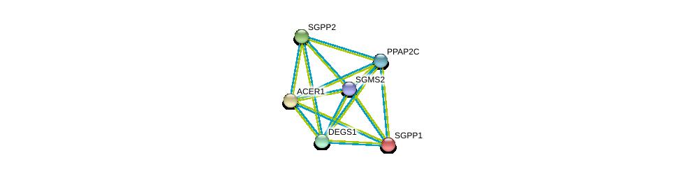 http://string-db.org/version_10/api/image/networkList?limit=0&targetmode=proteins&caller_identity=gene_cards&network_flavor=evidence&identifiers=9606.ENSP00000301452%0d%0a9606.ENSP00000315137%0d%0a9606.ENSP00000316476%0d%0a9606.ENSP00000329697%0d%0a9606.ENSP00000247225%0d%0a9606.ENSP00000351981%0d%0a